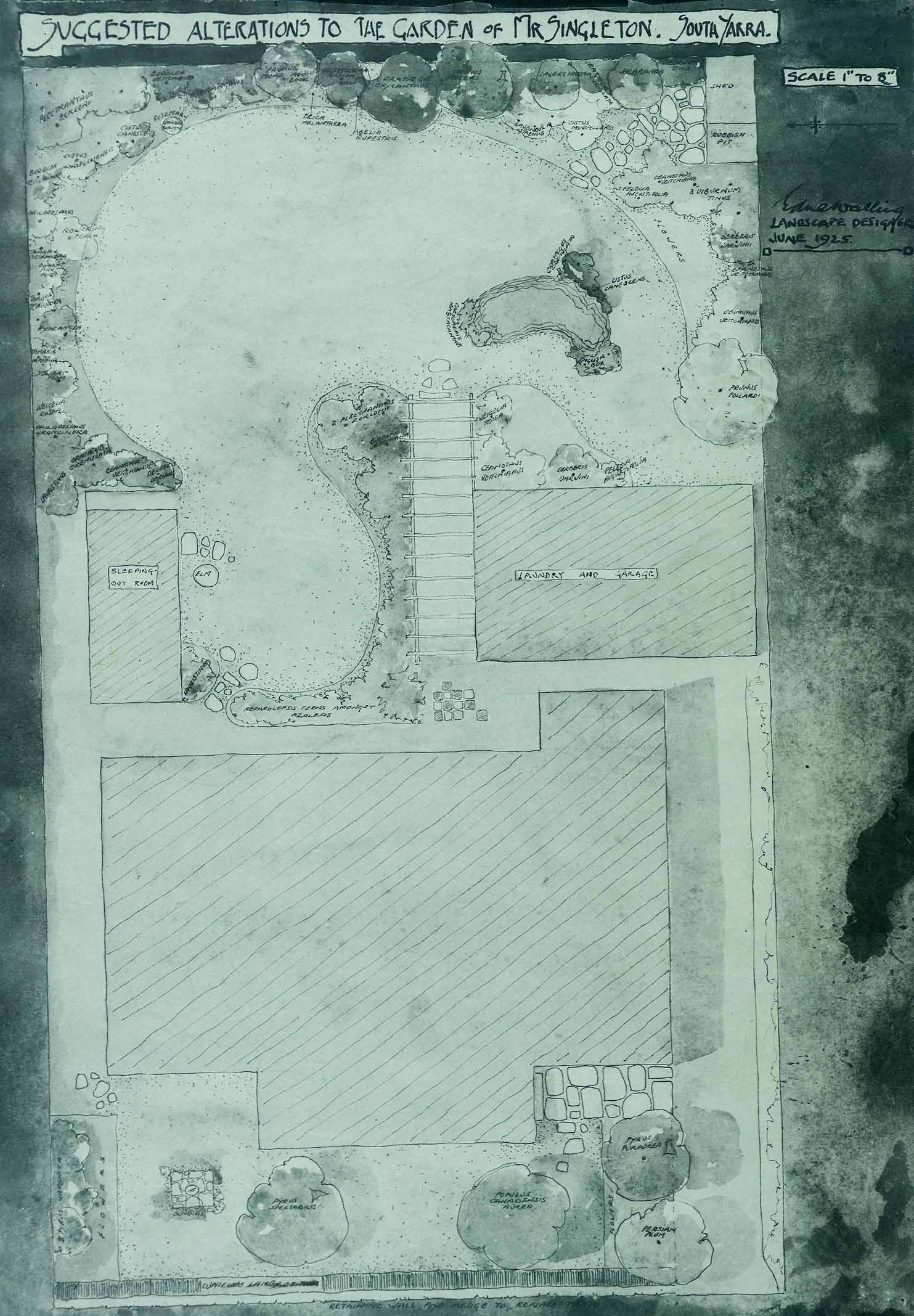 Suggested garden alterations singleton for Suggested garden layout